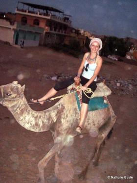 Balade à dos de chameau (3)